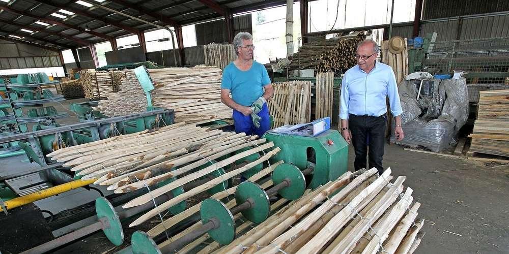 Les clôtures en bois de châtaignier sont une des spécialités de l'entreprise de Philippe Rousseau. photo Jean-Christophe Sounalet/« so »