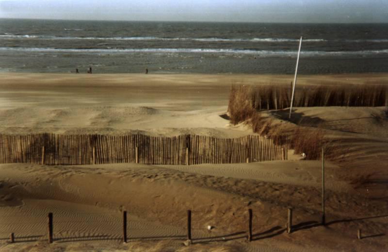 Treillage en châtaignier pour protection dunes