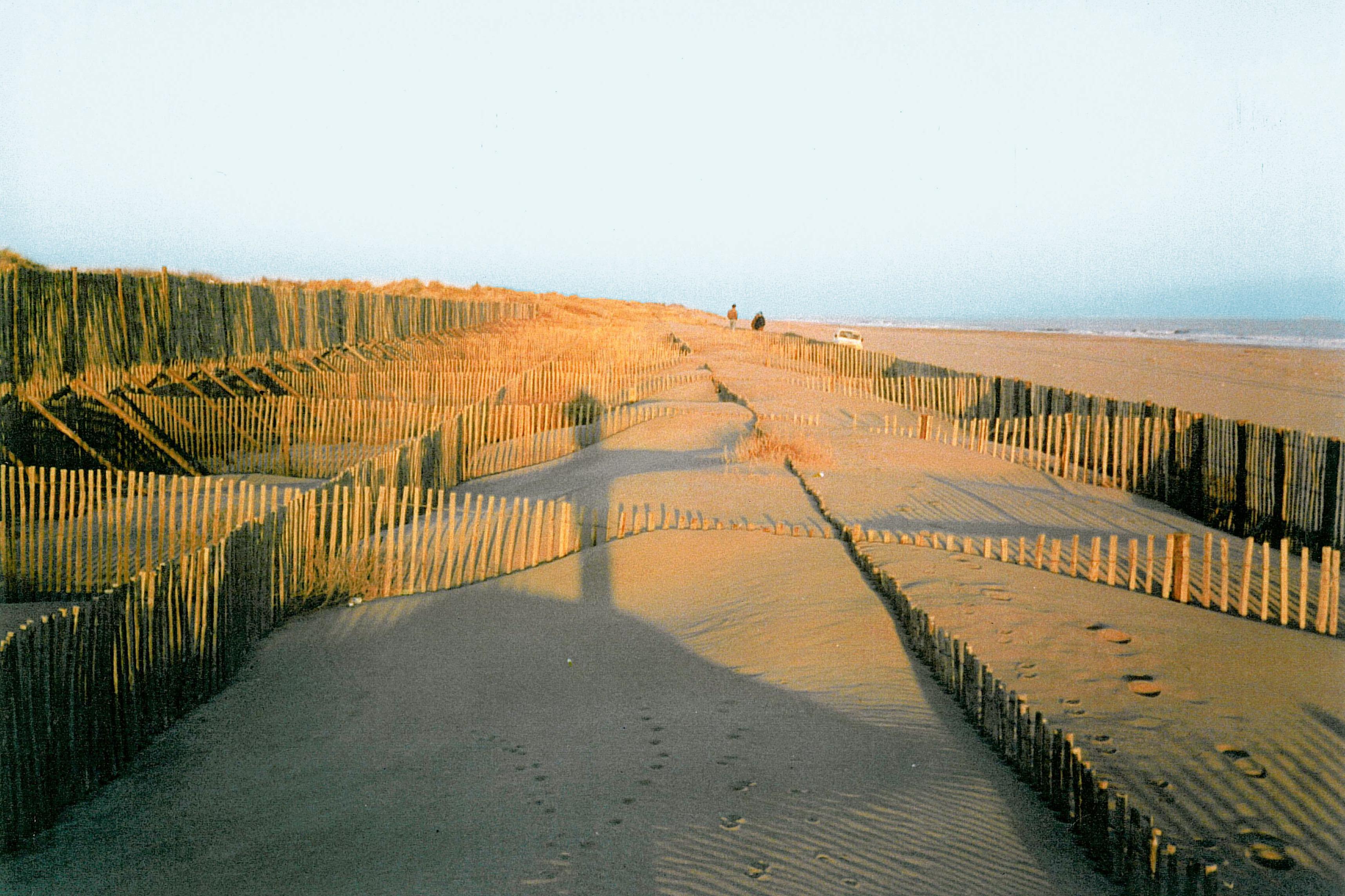 Treillages en châtaignier utilisé pour crée les dunes